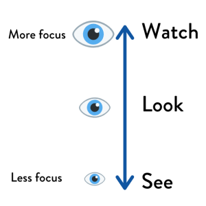 How To Use See Look And Watch Inspiration English